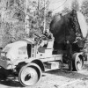 Fleet of Kelly Logging Trucks