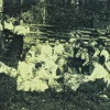 Williams and Van Eatons Picnic (early 1900s)