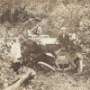 Kendalls are Stuck in the Woods (ca. 1920)