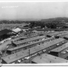 Japanese Removal from Eatonville and Internment