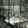 Charles Boettcher's Pond, Alder, Wash. (early 1900s)