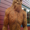 Sasquatch Sightings