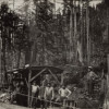 Canyon Road Construction (ca. 1919)