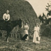 Farming in Eatonville (early 1900s)
