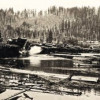 Dumping Logs in Mineral Lake (early 1900s)