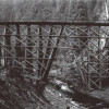 Logging Trestle, Nisqually River (ca. 1915)
