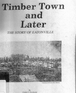 Timber Town and Later