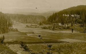 Ohop Valley in the early 1900s