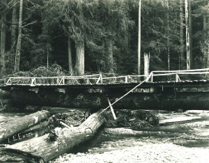 One Log bridge in Elbe