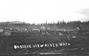 Old Alder in around 1920
