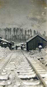 Snowy Logging camp