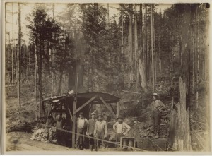 Logging the canyon