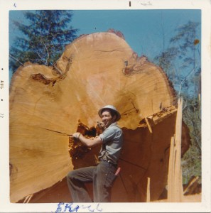 Logger Ernie Christian and a very big tree