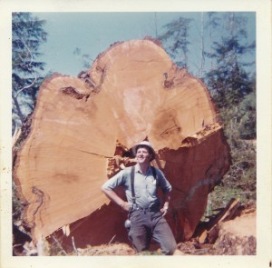Tree felled by Harrison & Ernie Christian (1970)