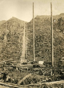 Steep incline, Pacific National Lumber Co.