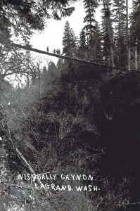 Suspension bridge across the Nisqually