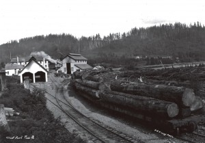 Mineral Lake Lumber Co.