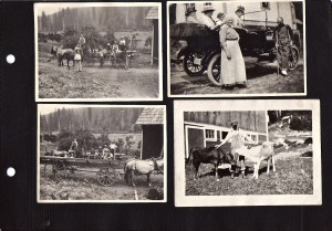 Page of the Kjelstad photo album (ca. 1915)