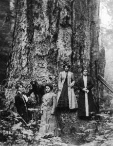 Women and dog photographed with large tree near Mineral, Wash.