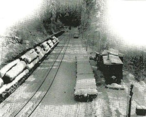 Logging in Reliance, Wash.