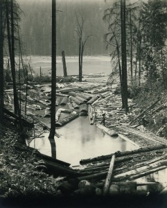 C. Boettcher log pond in Alder, Wash.