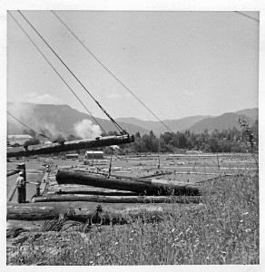 Mineral lake - logging 1964 (2)