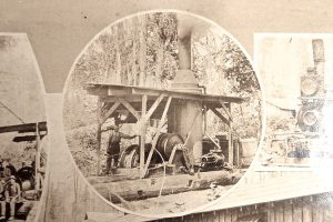 Elbe Lumber and Shingle Mill - Steam Donkey