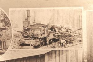 Tacoma Eastern Railroad - locomotive