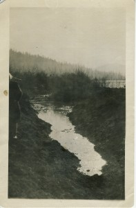 Taking Ohop Valley from Swamp to Pastures in 1889