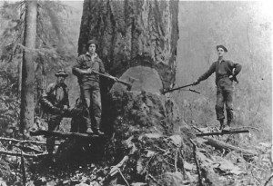 Clyde Williams on right helping fall a tree