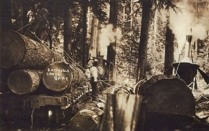 Eatonville Lumber Company rail system