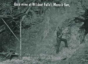 Wildcat Falls Gold Mine - Mensik family