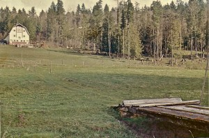 Henrickson barn in Ohop Valley (late 40s or early 50s)