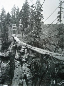 Private bridge across Nisqually Canyon