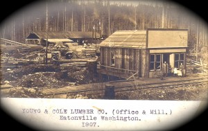 Young & Cole Lumber Co. 1907