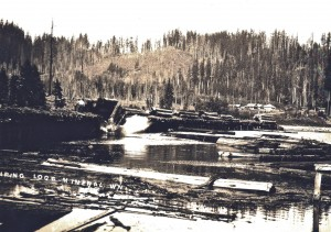 Logs being dumped into the water at Mineral, Wash.