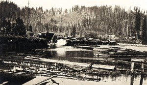 Logs being dumped into Mineral Lake