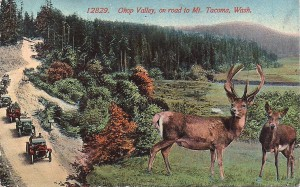 Mountain Highway & Ohop Valley ca. 1917 or earlier