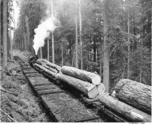 Logs coming out of Mineral (1949(