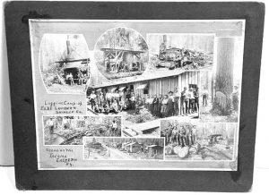 Elbe Lumber & Shingle Co (Full view of wall card)